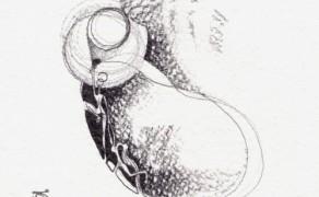 Seme Onirico IV